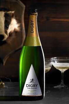 DIGBY FINE ENGLISH 2010  RESERVE BRUT